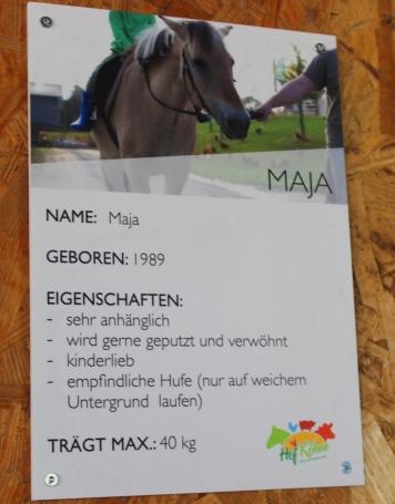 Hof Köhne Pferde