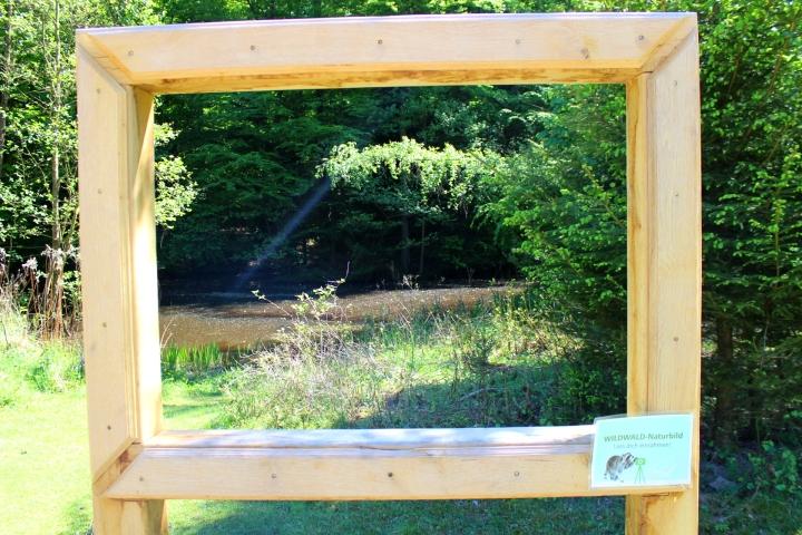 Wildwald Vosswinkel Rahmen