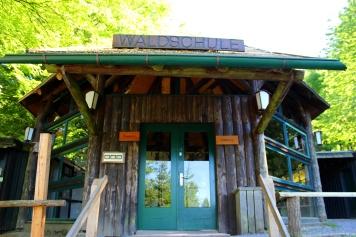 Wildwald Vosswinkel Waldschule