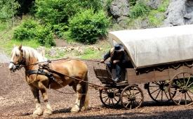 Elspe Festival Pferd Kutsche