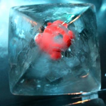 Eiskunst Objekteinfrierung