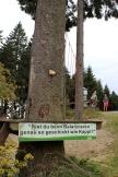Erlebnisberg Kappe Naturerlebnispfad Kletterelement