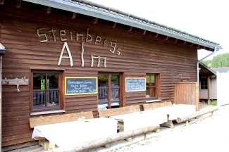 Steinbergs Alm Wildewiese