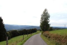 Wildewiese Wanderwege