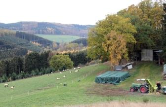 Lennestadt Grevenbrück Landwirtschaft