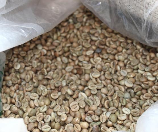 Quadro Coffee Kaffeebohnen ungeröstet
