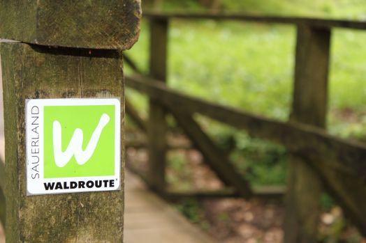 Sauerland Waldroute