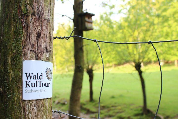 Wald KulTour