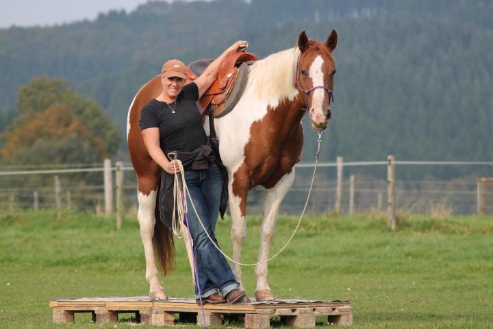 Horsemanship Handshake Anke Rath