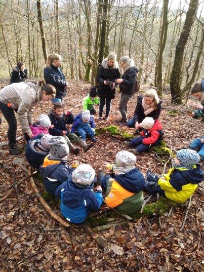 Pleydey goes nature Wald