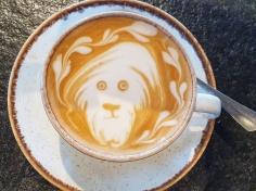 Latte Art Milchschaum Richard Siongco