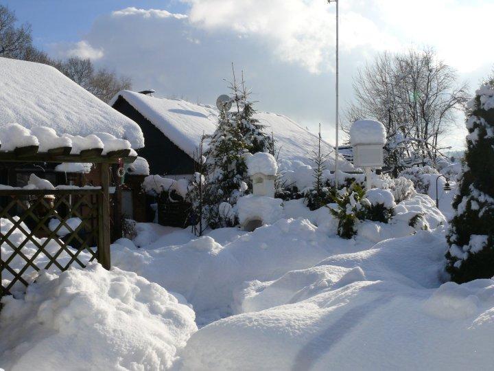 Schnee Ende Januar 2010