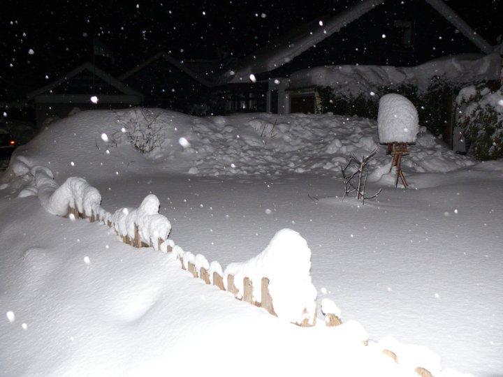 Schnee Ende Januar 2010_2